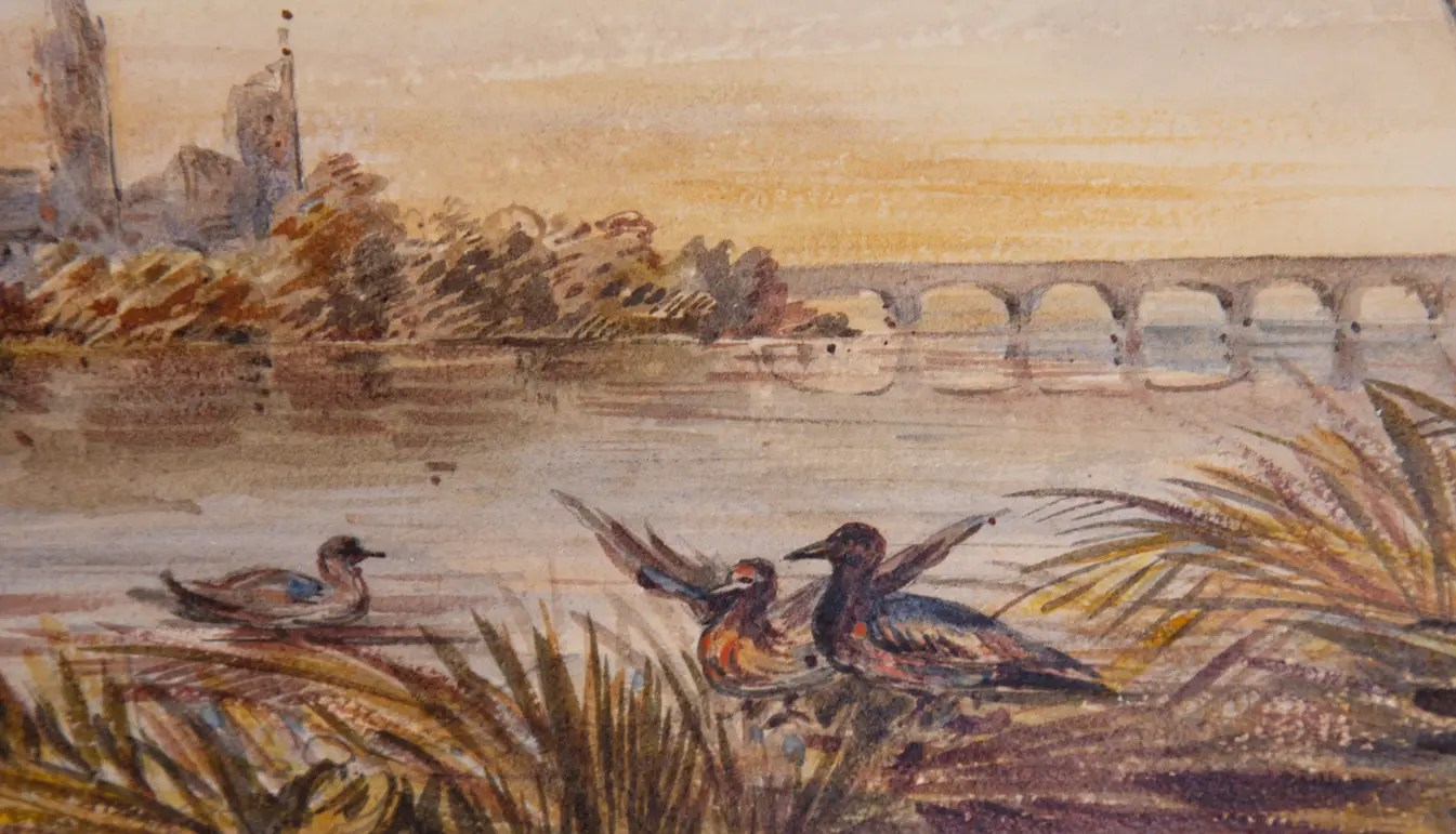 Zoom on a 19th Century Édouard Quesnel Watercolor of Water Scene with Ducks
