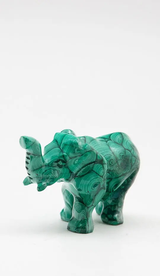 small-malachite-elephant