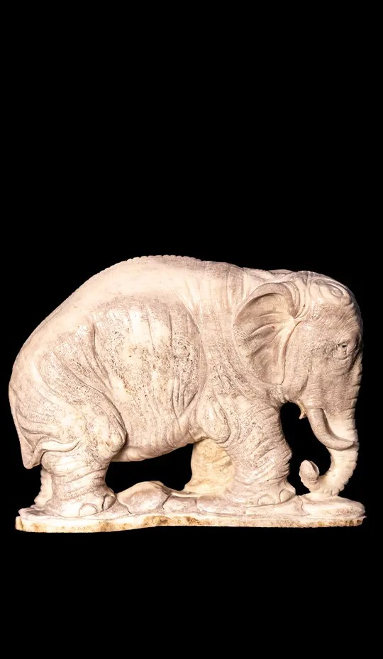 Moose Antler Carving of a Elephant