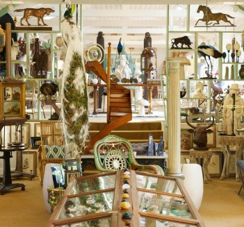 Interior of the Millbrook shop with peacock.