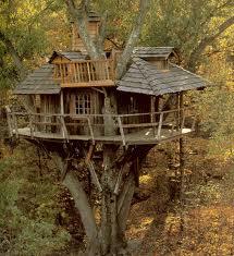 Nuestra casa del arbol