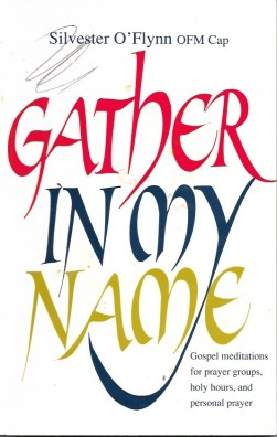 gather-in-my-name Fr Silvester book cover