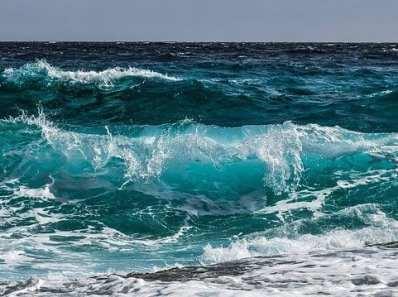 Le ficocianine sono presenti nelle alghe marine: in particolare nella Klamath e nella Spirulina. Ma a cosa servono? Scopriamolo insieme!