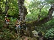 Aguasalio pico, haya rio Achín 83