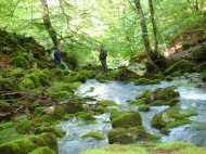 Aguasalio rio Achin 07