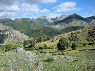 Crémenes, sabinar, La Neblera 2 jul 2014 3610
