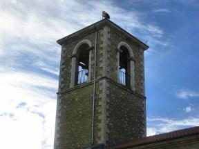 15 feb 2014 7286 Las cigueñas sin nido en la torre