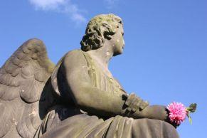 Angel and Flower- Glasgow Necropolis