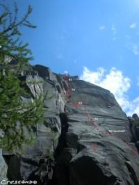 Val d'Orco Oreille du Pachyderme - Rattle Snake