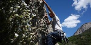 stage adulte grimpe, stage escalae hautes-Alpes, découverte escalade