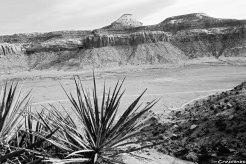stage de grimpe, stage d'escalade, desert tower