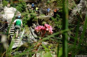 easy route climbing, guide of via ferrat, family climbing activitie