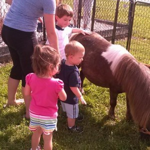 Top Petting Zoos For Hire In Indianapolis In 100 Guaranteed Gigsalad