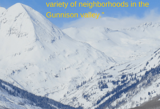 Crested Butte real estate testimonial