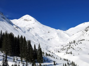 2021 Crested Butte Real Estate Outlook