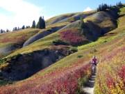 Best Crested Butte Neighborhoods For Mountain Biking