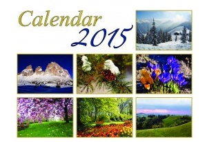 3550_1415866612_calendarpage0