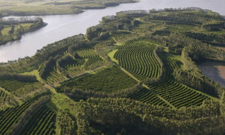 Climate Solutions: Carbon farming