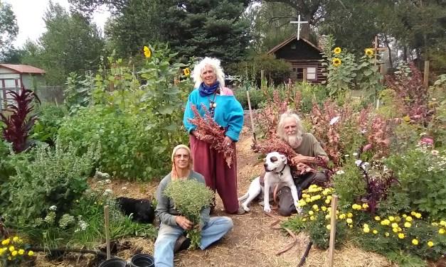 Garden Guru: Ascension Garden at Little Shepherd