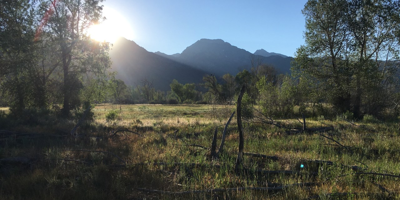 Baca National Wildlife Refuge expands its boundaries: a win for riparian habitat restoration