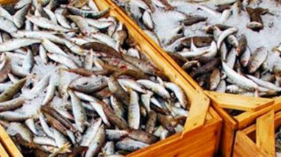 Ευρωπαϊκά κονδύλια αλιείας – υδατοκαλλιέργειας