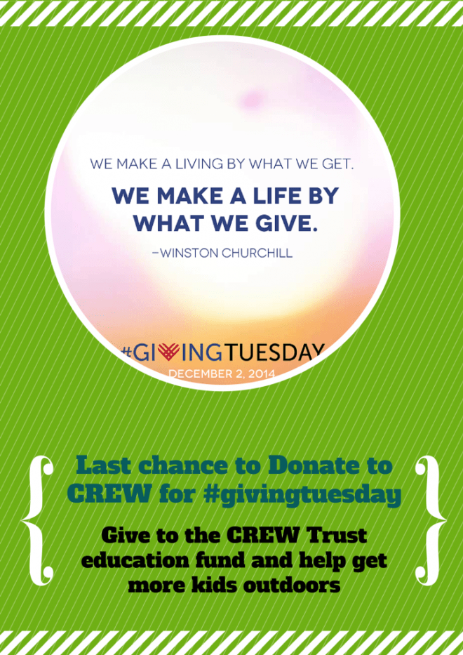 flyer for #givingtuesday