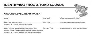 id frog