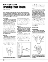 Pruning article CRFG 2008