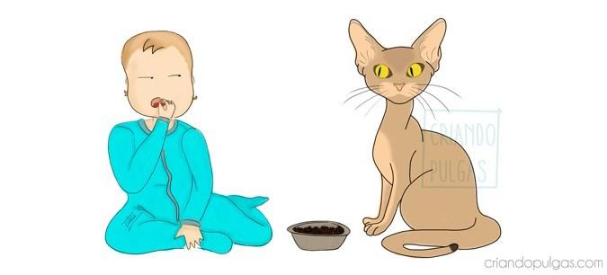 Problemas de convivencia entre gatos y bebés. El desenlace