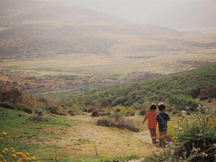Niños paseando por el campo