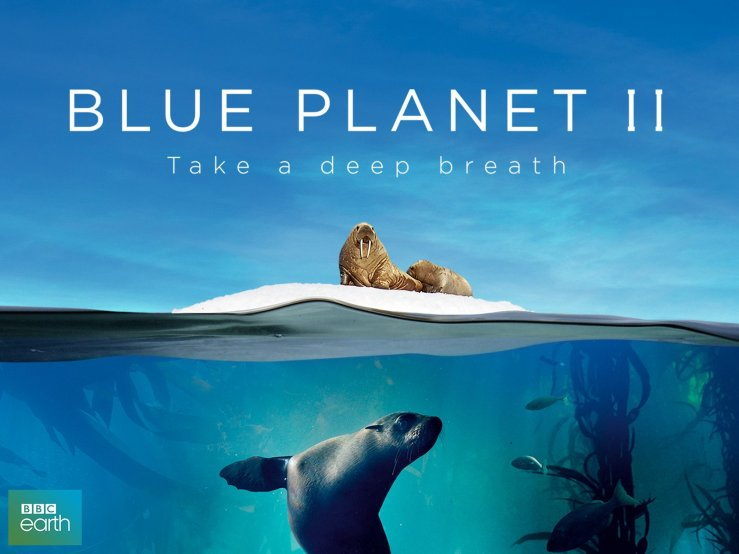 Portada de Blue Planet II con foto de vida sobre el agua y dentro del agua