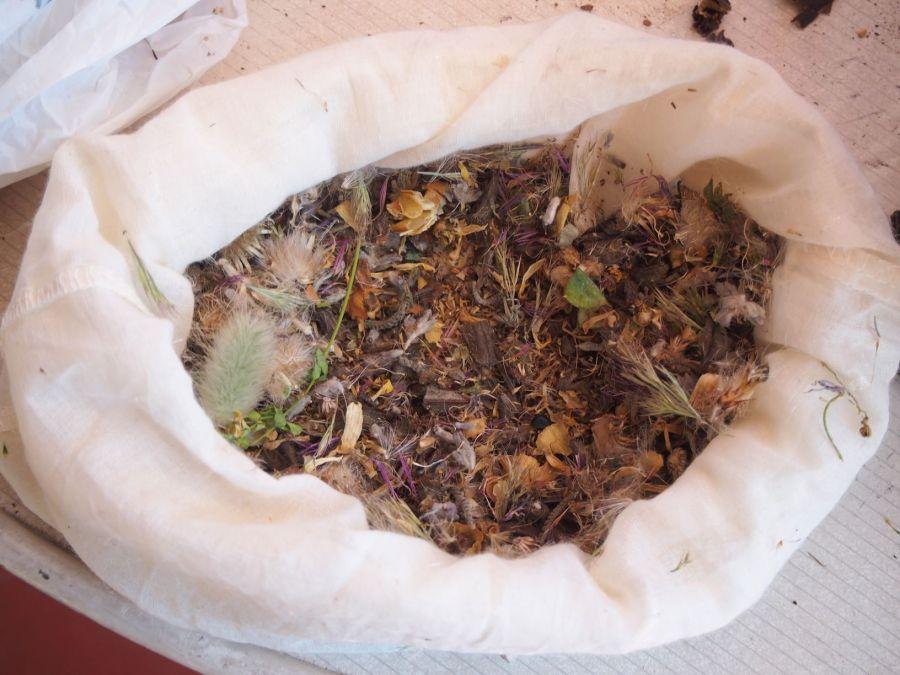 Semillas de flores silvestres ya preparadas para el taller de bombas de semillas