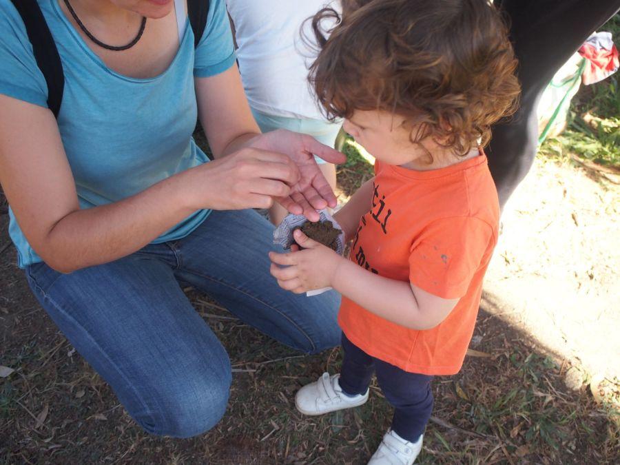 Niño haciendo unas bombas de semillas