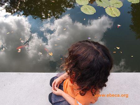 Nilos mirando un estanque
