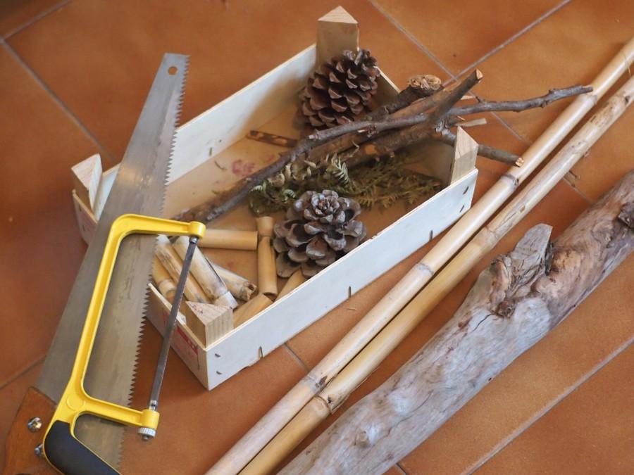 algunos materiales para el hotel de insectos; segueta, serrucho, piñas, cañas, palos y tronco
