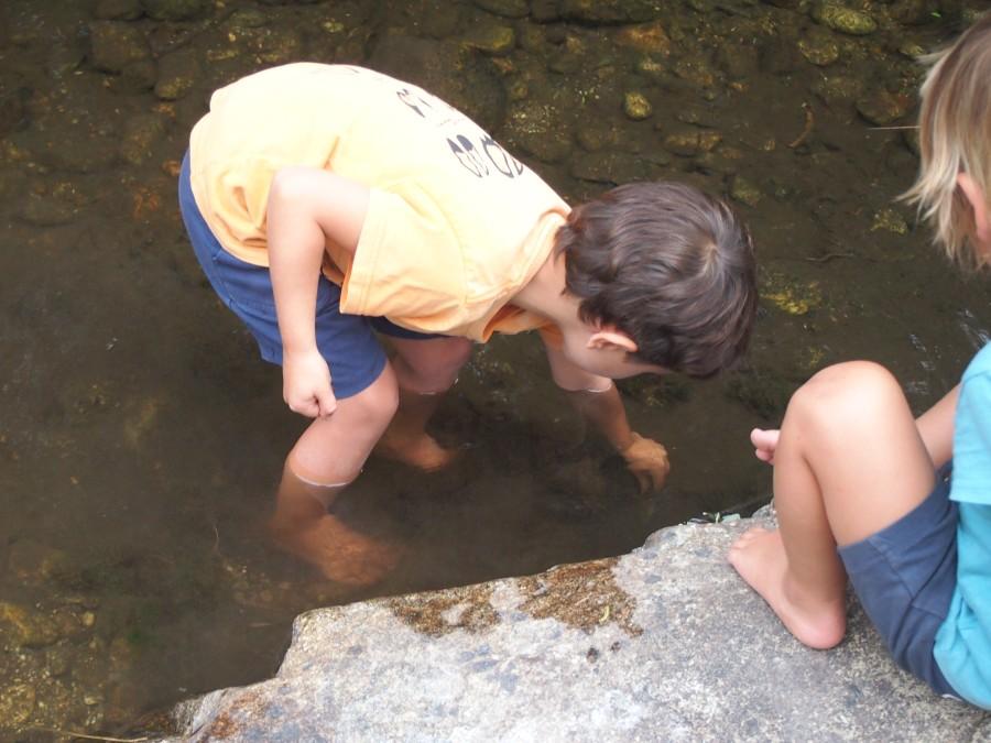 Niño buscando bichos en el lodillo de río