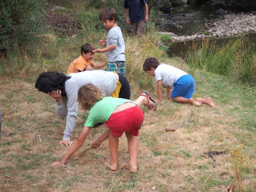 Niños jugando a juego de observación en la orilla del río