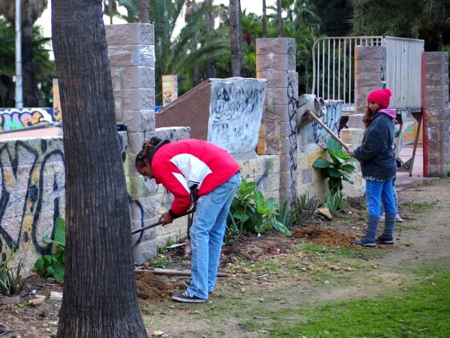 Gente haciendo agricultura de guerrilla y  plantando en un parque