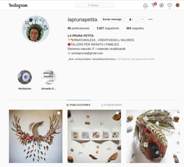 Foto de las pblicaciones en Instagram de las pruna petita donde se ven sus composiciones