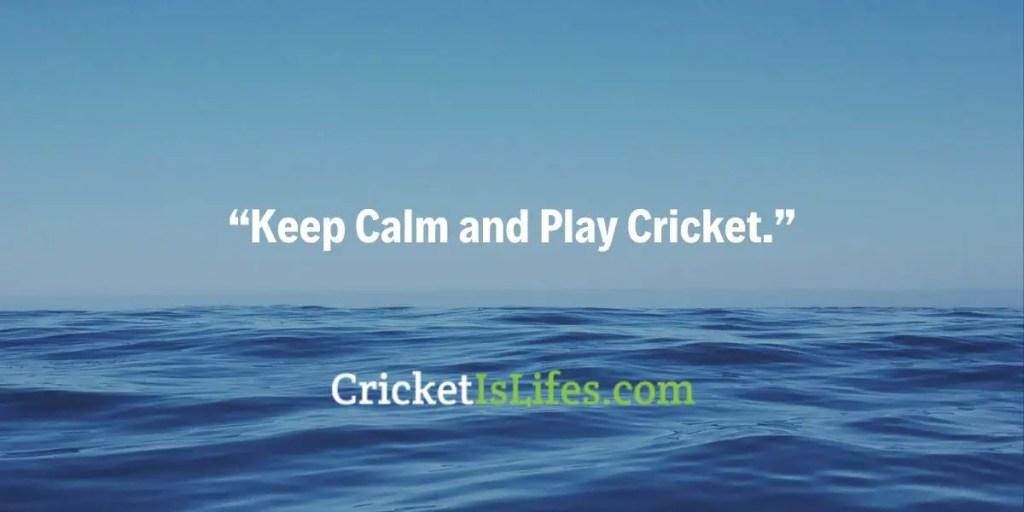 Keep Calm and Play Cricket.