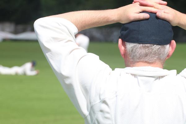 settle cricketer