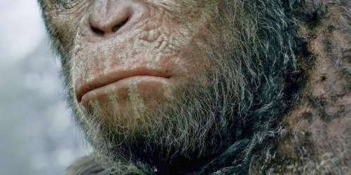 hr_Dawn_of_the_Planet_of_the_Apes_8