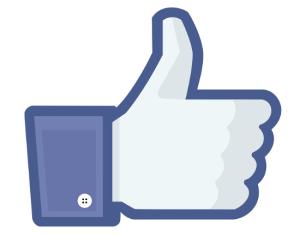 Like of Facebook leidt man rechtstreeks naar de cel