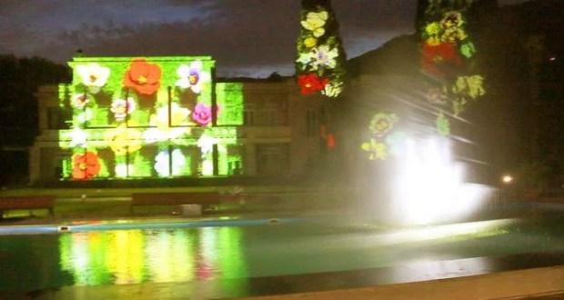 Никитский ботанический сад уводит гостей... в ночь