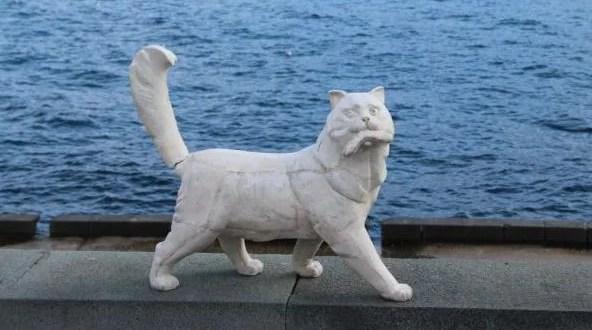 В Ялте прибавится котов