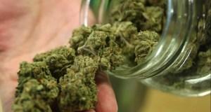 Участковый нашел у джанкойца 8 кг марихуаны