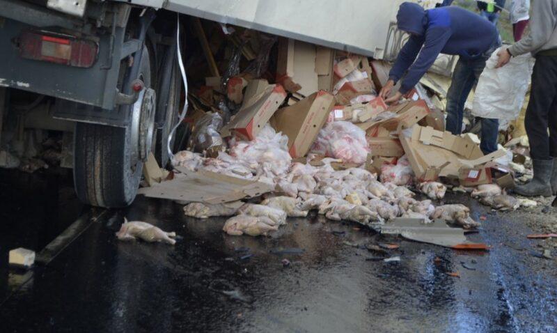 ДТП под Керчью водителю фуры с курятиной обойдётся в 4 миллиона рублей