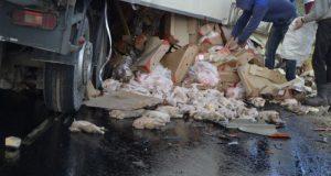 Летят птицы... ДТП под Керчью: фура с курятиной въехала в МАН с металлом