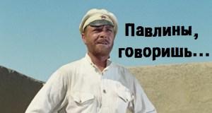 В Севастополе затеяли реконструкцию Матросского бульвара