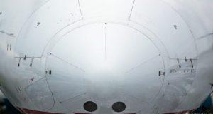 Что произошло в симферопольском аэропорту. Были ли птицы, «атаковавшие» самолет?